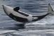Az Antarktisz és Új-Zéland között ingázhatnak az orkák