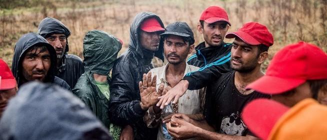 Hercegszántónál áttörték a kerítést a migránsok - özönlenek a Mohács-szigetre