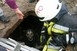 Tűzoltók mentették ki a gödörbe esett kutyát