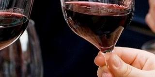 Villányi pincészetek mutatják be prémium boraikat
