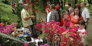 Még húsevő növények és bio termékek is vásárolhatók a botanikus kertben