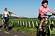 Biciklis felfedezőket vár a villányi borvidék