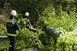 Folytatódott a viharkárok felszámolása a megyében
