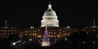 Megérkezett Washingtonba a Fehér Ház hivatalos karácsonyfája