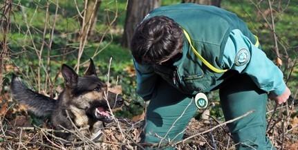 Újabb méregkereső kutyákat állítottak szolgálatba